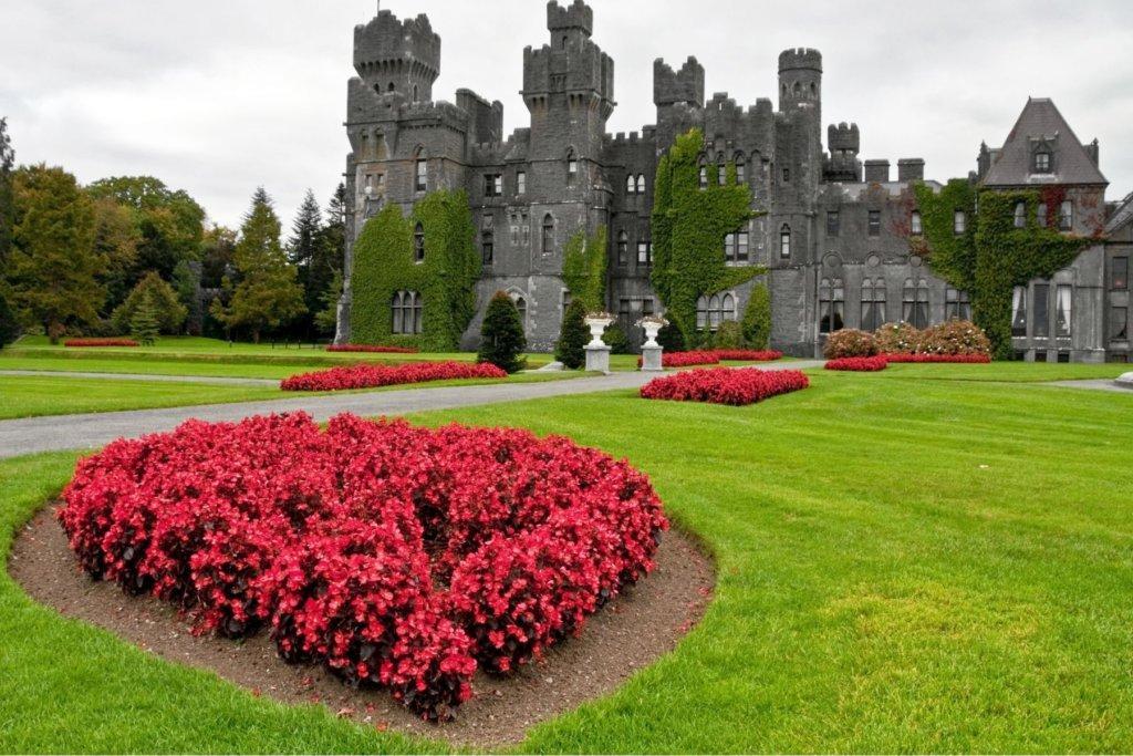regal castle hotels