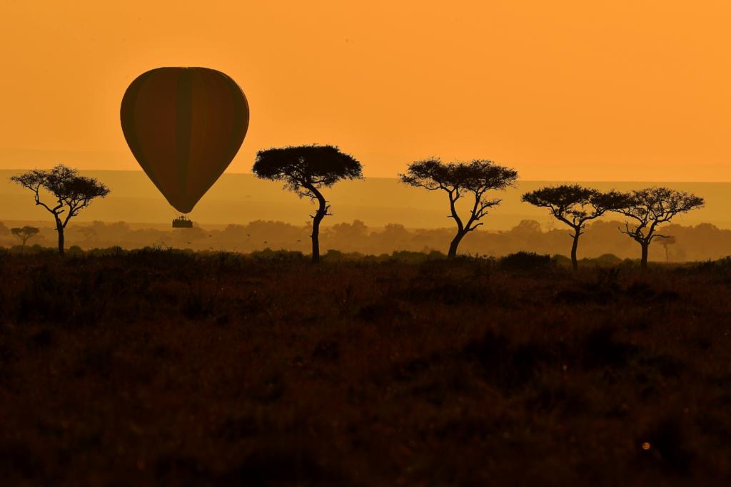 Safari - hot air balloon silhouette