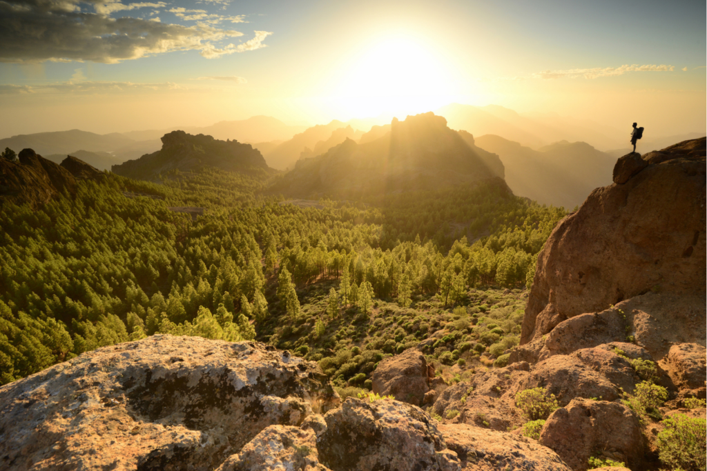 A beautiful view over rocky peaks and trees in Gran Canaria, with a silhouette of a hiker standing on the edge looking over