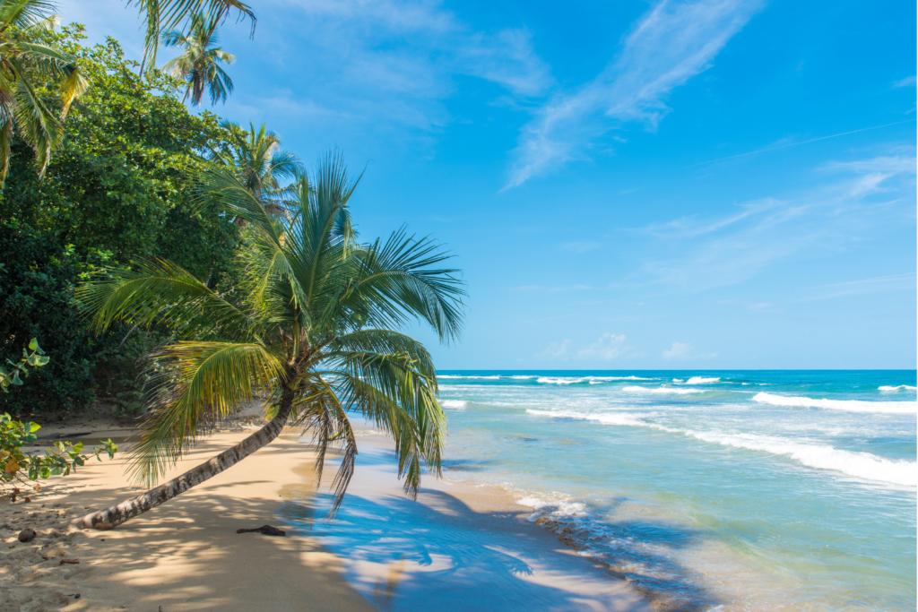 Travel to a white sandy beach in Costa Rica
