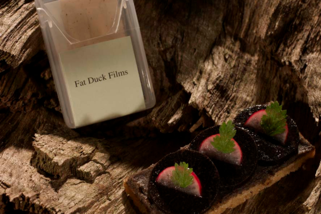 Fat Duck Films on an oak log