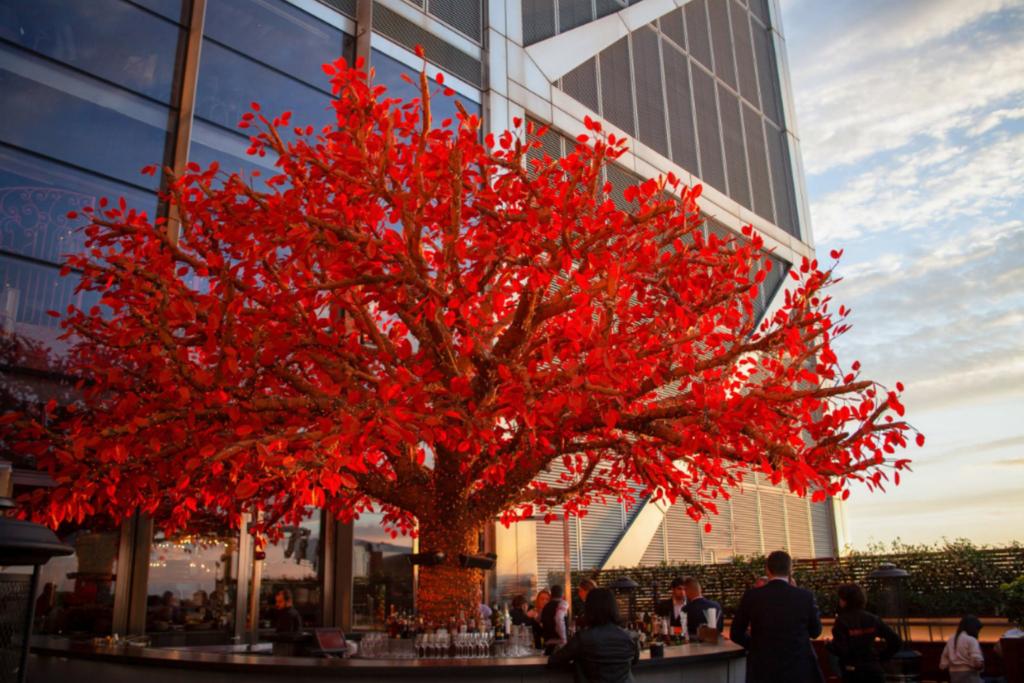 SUSHISAMBA City Tree Terrace